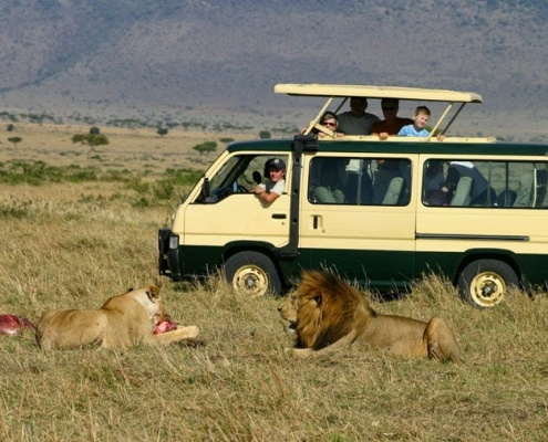 5 days Masai Mara Safari