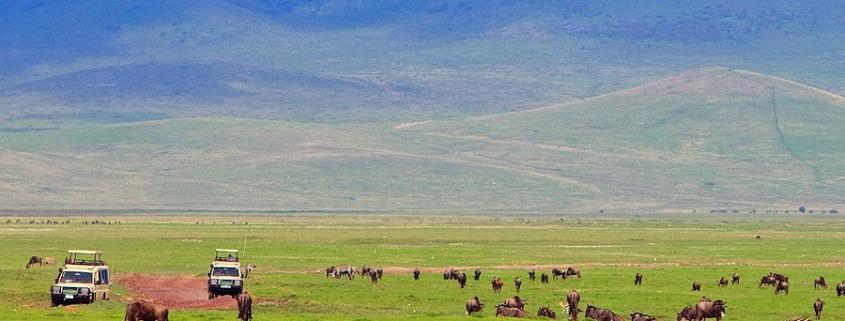 3 days Ngorongoro Safari