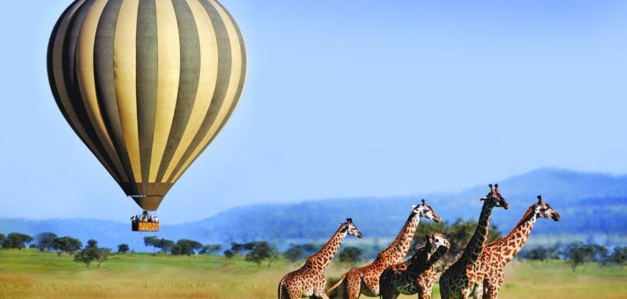 Serengeti national park activities